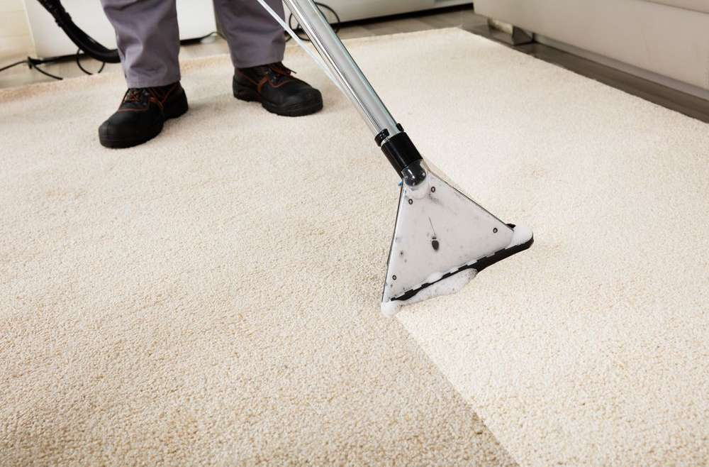 What Makes Total Carpet Cleaning Different To Other Carpet Cleaning Companies in Campbelltown?